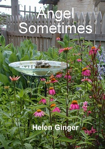 Angel Sometimes: A Book Review